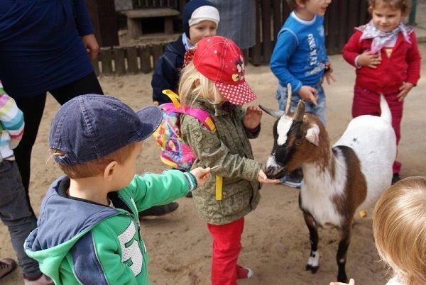 גן חיות בעיר Lodz