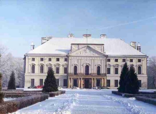 ארמון Sanguszkos ב Lubartow