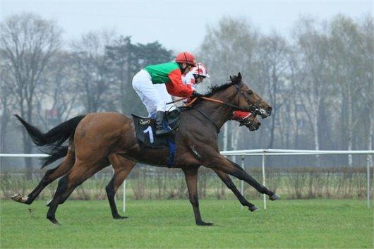 רכיבה על סוסים בפולין