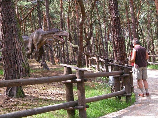 Jura Park Solec