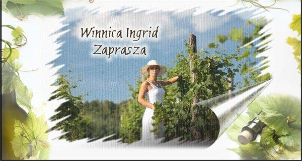 Winnica Ingrid יקב - Lubuskie